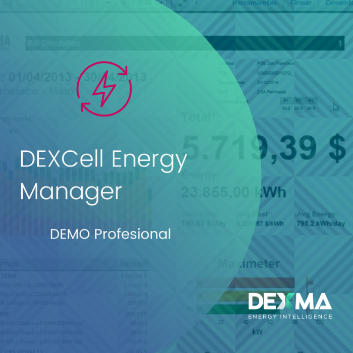 DEXCell Energy Manager DEMO Profesional