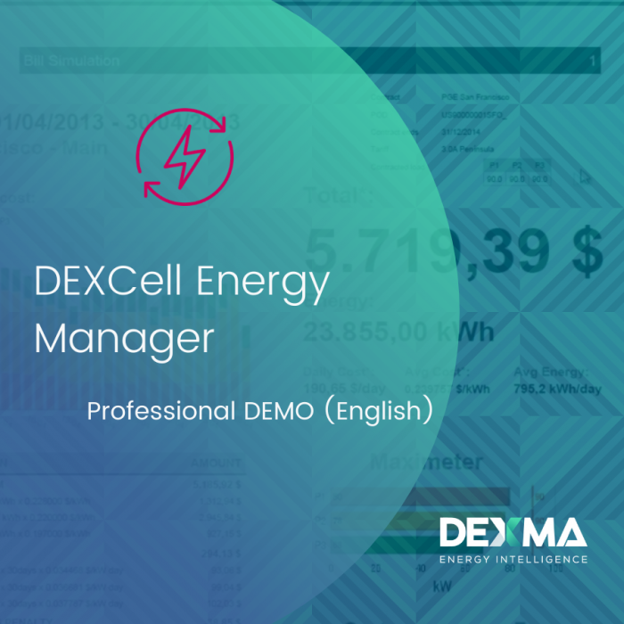 DEXCell Energy Manager Professional DEMO (English)