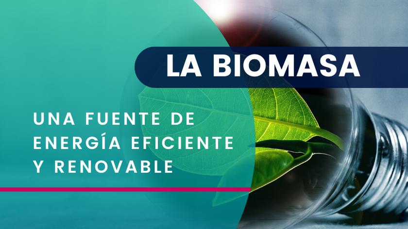La Biomasa una Fuente de Energía Eficiente y Renovable