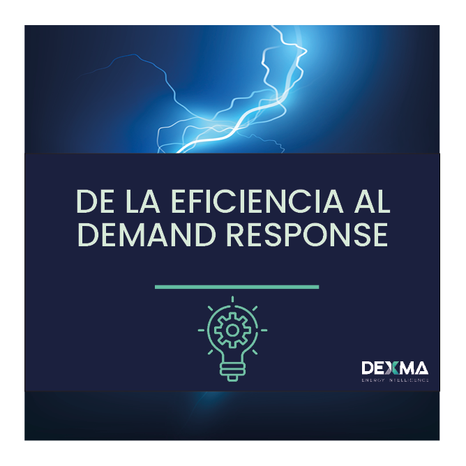 De la Eficiencia Energética al Demand Response