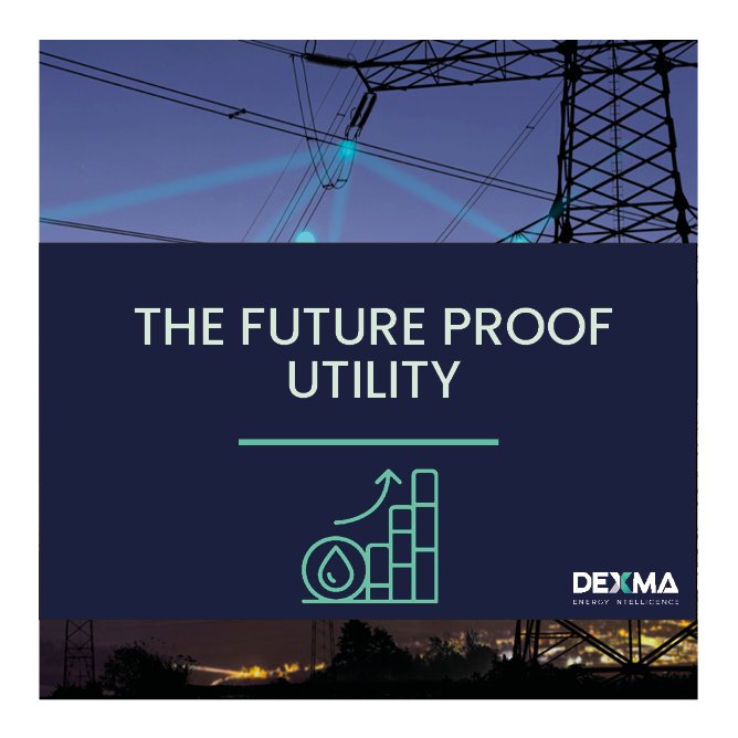 The Future-Proof Utility: Digital Transformation