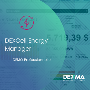 DEXCell Energy Manager Professional DEMO