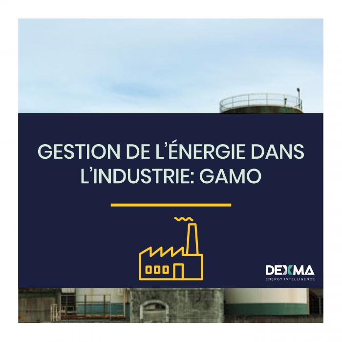 Gestion de l'Énergie dans L'Industrie – Gamo