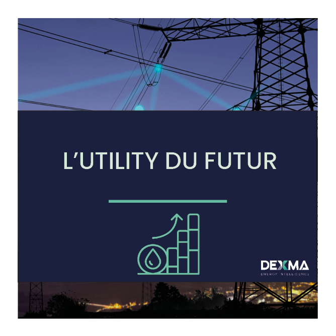 Transformation Digitale: Les Utilities de demain