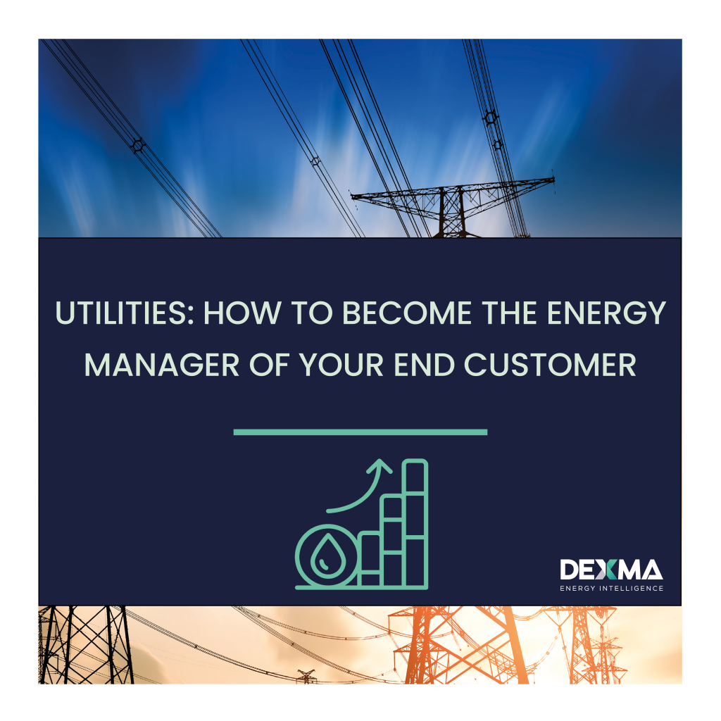 Utilities_How to become the energy manager of your end customer