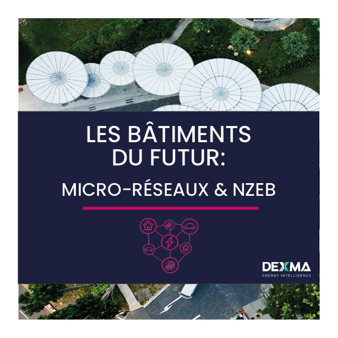 Les Bâtiments du Futur: Micro-Réseaux & NZEB (Anglais)