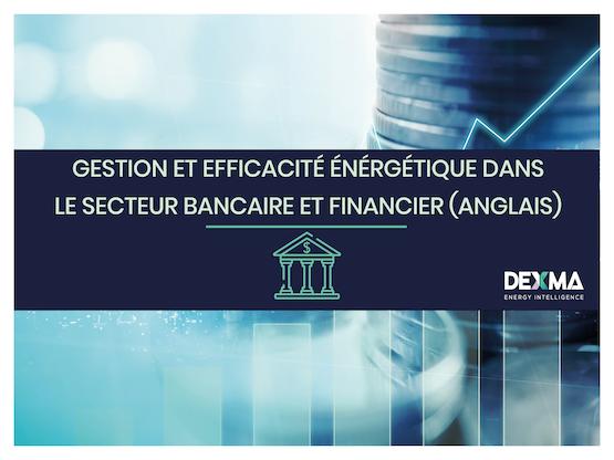 Gestion et Efficacité énergétique dans le secteur bancaire et financier