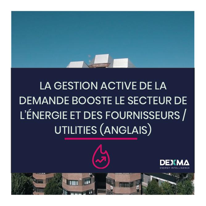 La Gestion Active de la Demande booste le Secteur de l'Énergie (Anglais)
