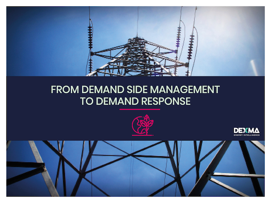 FROM DEMAND SIDE MANAGEMENT TO DEMAND RESPONSE