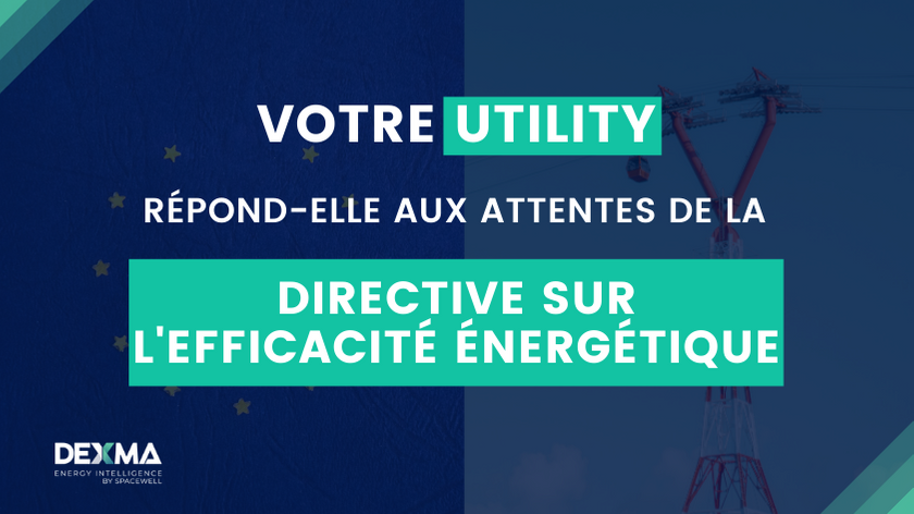 Révision de la Directive sur l'Efficacité Énergétique