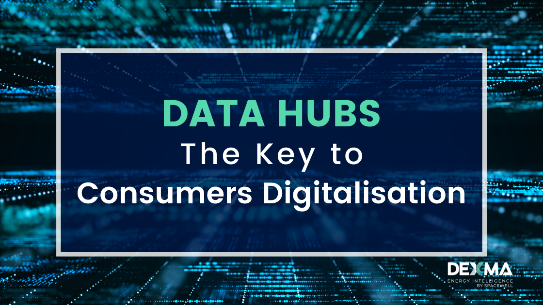 Role of the Data Hubs for Digital Consumers